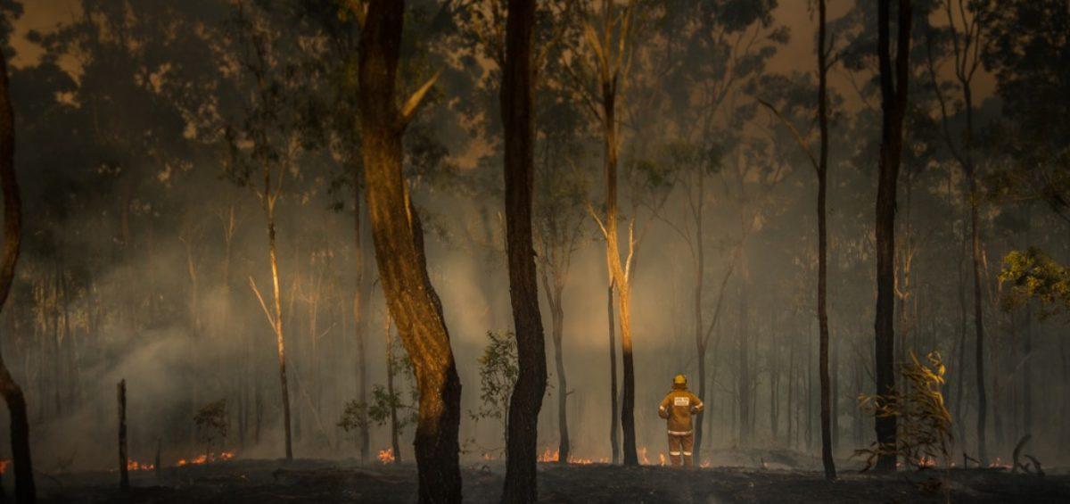 SafeWork Australia Air Pollution