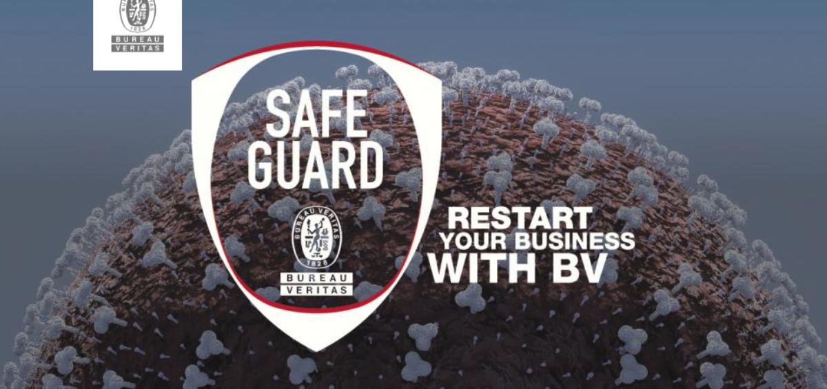 Bureau Veritas Safeguard Insurance Program